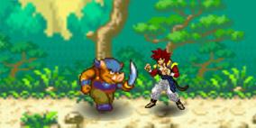 Dragon Ball Fierce Fighting 2.8