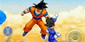 Goku Warrior Fight