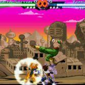 Dragon Ball Z Mugen 2009 - Screenshot