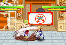DBZ Fierce Fighting 2.2