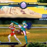 Saint Seiya Mugen Forever - Screenshot