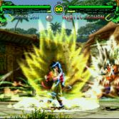 Dragon Ball Z Mugen 2008 - Screenshot