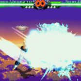 Dragon Ball Z Mugen 2007 - Screenshot