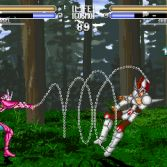 Vai Seiya Mugen - Screenshot